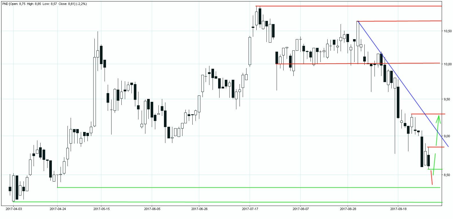 Wykres akcji spółki Polnord w układzie dziennym