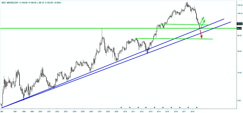 Wykres akcji Budimex - skala miesięczna