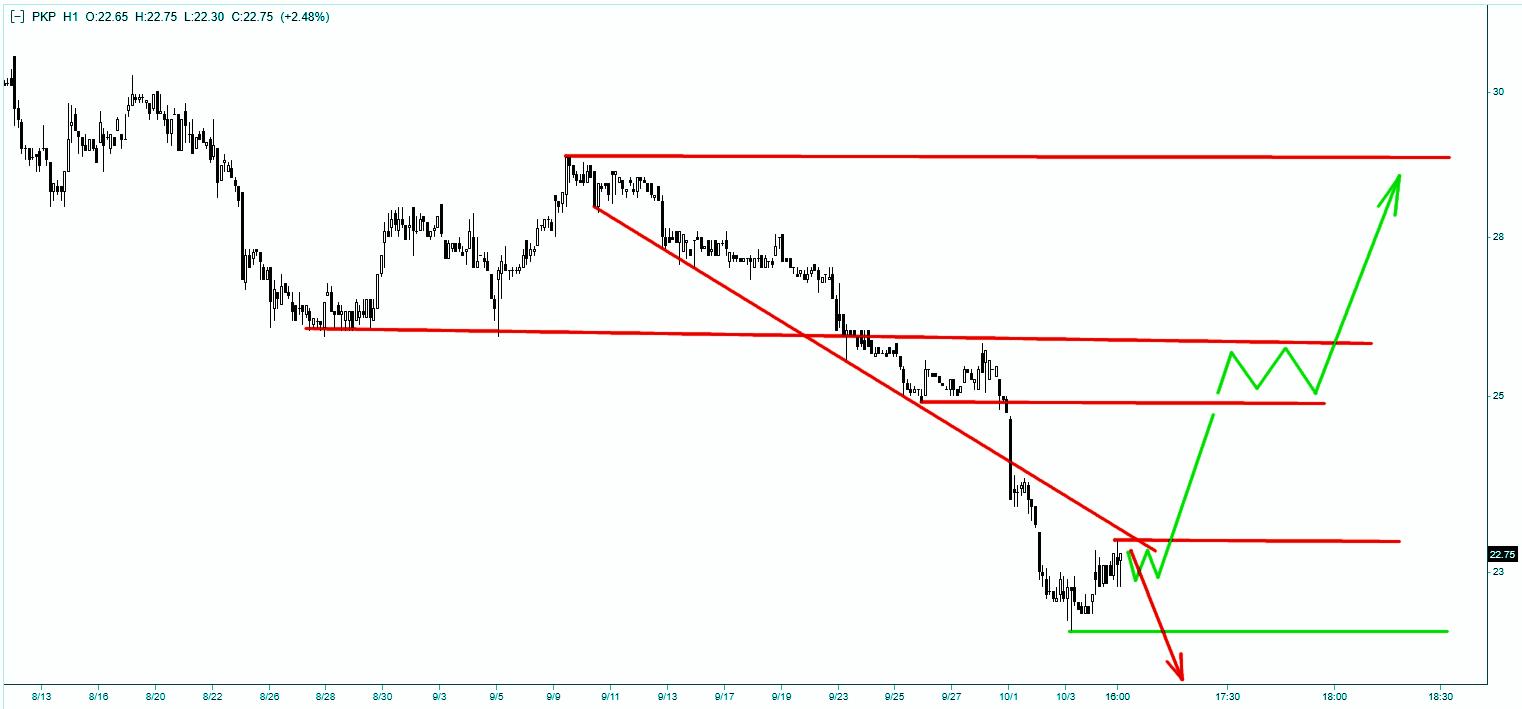 Wykres akcji PKP Cargo - skala godzinna